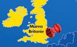 Transport persoane Roman Anglia