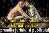 Se cauta fotografia lunii februarie - Premiile juriului si publicului
