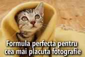Formula perfecta pentru cea mai placuta fotografie