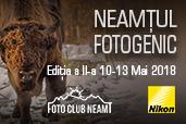 Neamtul Fotogenic - Wildlife si Istorie in Tinutul Zimbrilor