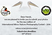 Concursul International de Fotografie de Natura Milvus 2018