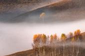 Tura foto in Muntii Apuseni cu Nikon D750 - de Alex Robciuc