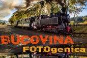 Intalnirea fotografica BUCOVINA FOTOgenica, editia a II-a