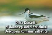 Delta Dunarii - al doilea episod al serialului Descopera Romania Salbatica