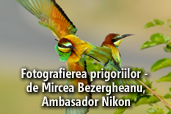 Fotografierea prigoriilor - de Mircea Bezergheanu, Ambasador Nikon
