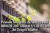 Primele fotografii de test cu noul NIKKOR AF-S 200-500mm f/5.6E ED VR - de Dragos Asaftei