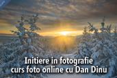 Initiere in fotografie - curs foto online cu Dan Dinu