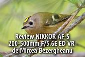 Review NIKKOR AF-S 200-500mm F/5.6E ED VR - de Mircea Bezergheanu, Ambasador Nikon