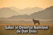 Safari in Desertul Namibiei - de Dan Dinu