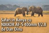 Safari in Kenya cu  NIKKOR AF-S 400mm f/2.8 -  de Dan Dinu