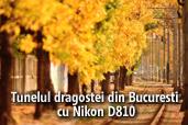 Tunelul dragostei din Bucuresti cu Nikon D810