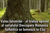 Valea Ialomitei - al treilea episod al serialului Descopera Romania Salbatica se lanseaza la Cluj