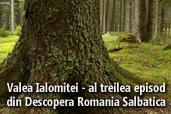 Valea Ialomitei - al treilea episod din Descopera Romania Salbatica