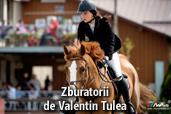 Zburatorii - de Valentin Tulea