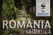 """Romania salbatica"" - expeditie de fotografie in ariile protejate din Romania"