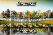 Se cauta fotografia lunii octombrie: Fotografia de natura - culorile toamnei