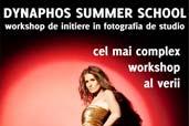 Dynaphos Summer School