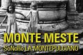 Monte Meste - o expozitie foto Serban Mestecaneanu