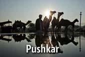 Un prim pas prin infinita Indie - Pushkar - episodul IV