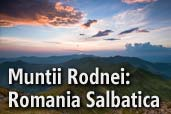 Muntii Rodnei: Romania Salbatica