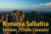 Romania Salbatica: Semenic - Cheile Carasului