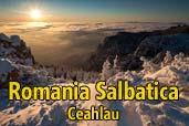 Romania Salbatica: Ceahlau