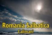 Romania Salbatica: Calimani