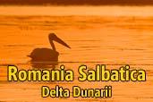 Romania salbatica: Delta Dunarii