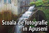 Scoala de fotografie in Apuseni