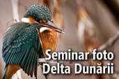 Seminar foto in Delta Dunarii alaturi de Costas Dumitrescu
