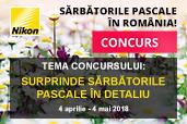 Concurs: Surprinde Sarbatorile Pascale in detaliu