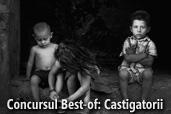 Concursul Best-of: Castigatorii