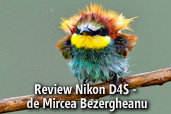 Review Nikon D4S - de Mircea Bezergheanu