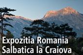 Expozitia Romania Salbatica la Craiova