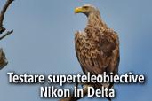 Testare superteleobiective Nikon in Delta