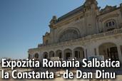 Expozitia Romania Salbatica la Constanta - de Dan Dinu