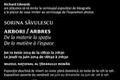 Expozitie foto de Sorina Savulescu: Arbori - De la materie la spatiu