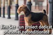 JINX SEZ -  un proiect dedicat prieteniei neconditionate -  de Ovidiu Jelea
