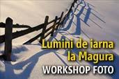 Lumini de iarna la Magura - workshop foto