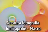 Se cauta fotografia lunii aprilie - Macro