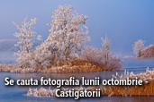Se cauta fotografia lunii octombrie - Castigatorii