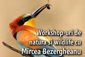 Workshop-uri de natura si wildlife in Dobrogea cu Mircea Bezergheanu