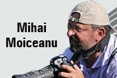 Fotograful de natura - un interviu cu Mihai Moiceanu