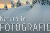 Natura in fotografie - curs foto cu Dan Dinu la Bucuresti