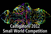 Castigatorii 2012 Small World Competition