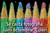 Se cauta fotografia lunii octombrie: Culori