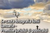 Se cauta fotografia lunii ianuarie - Premiile juriului si publicului