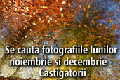 Se cauta fotografiile lunilor noiembrie si decembrie - Castigatorii