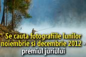 Se cauta fotografiile lunilor noiembrie si decembrie 2012 - Castigatorii premiului juriului