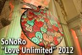 "SoNoRo ""Love Unlimited"" 2012  - Galerie de imagini de Serban Mestecaneanu"